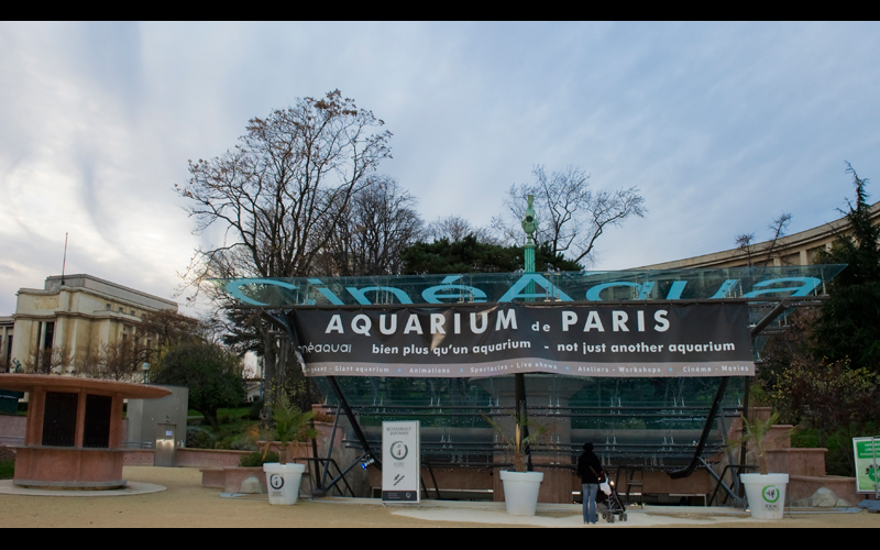 L&A Music: Concert Aquarium Paris